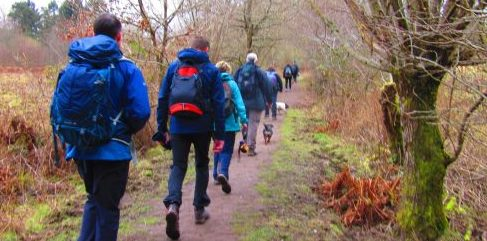 Your Guided Walks